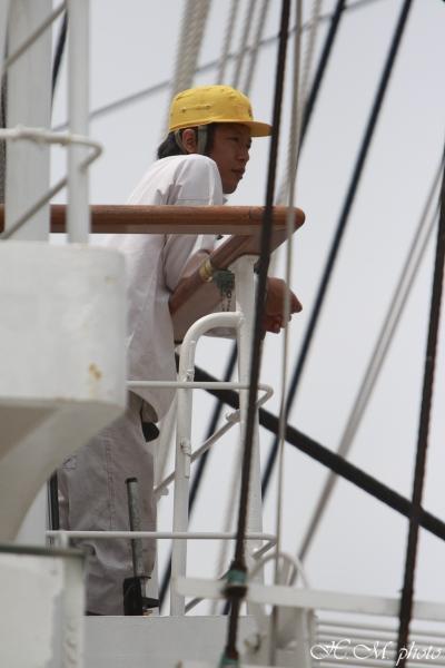 2008_帆船まつり(昼)_01.jpg
