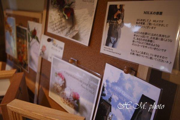 2009_AQUARIUM-cafe COCO_02.jpg