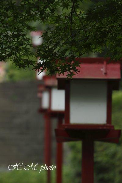 2009_橘神社_01.jpg