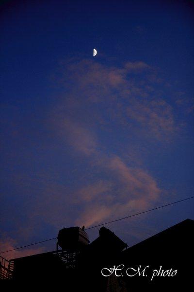 2010_夜に徘徊_01.jpg