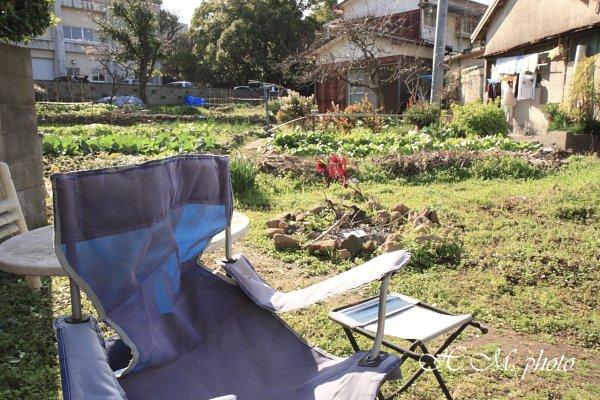 2010_家庭菜園_03.jpg