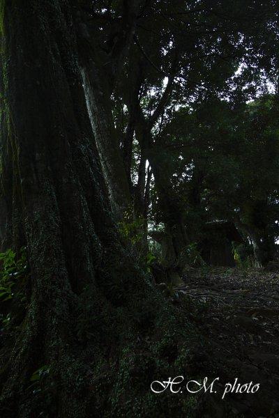 2010_熊野神社_06.jpg