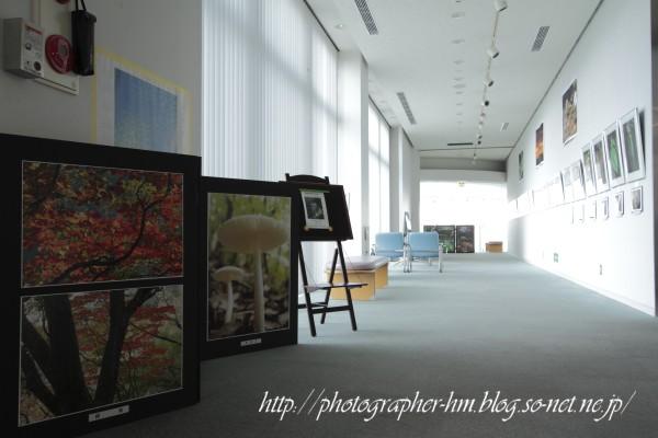 2011_前波政昭写真展_05.jpg