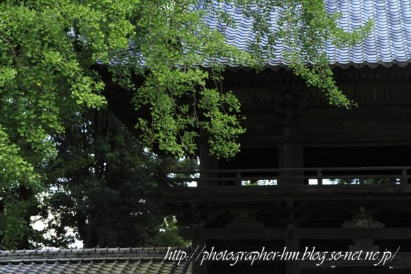 2011_天祐寺_10.jpg