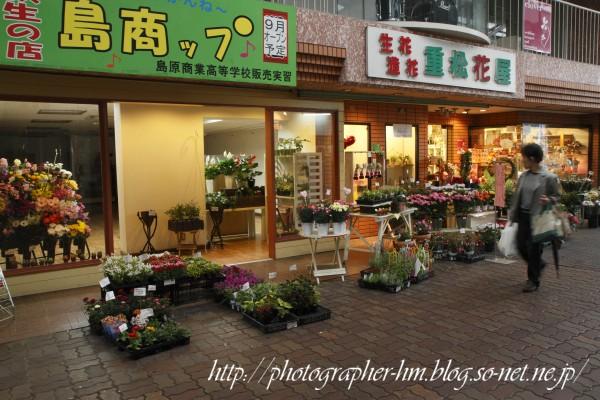 2012_サンシャイン中央街_04.jpg