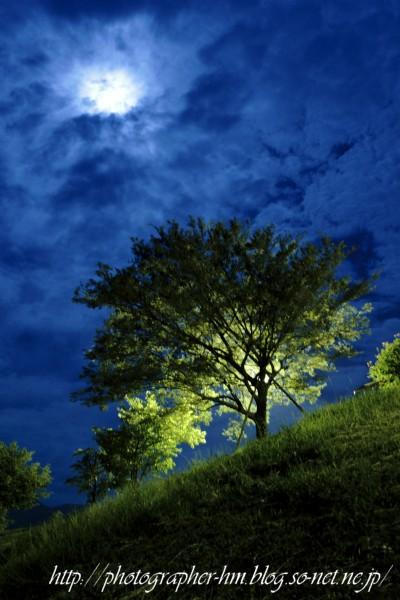 2012_月夜のドライブ_02.jpg