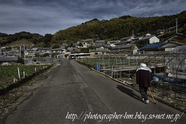 2012_飯香の浦ー茂木の海岸線_03.jpg